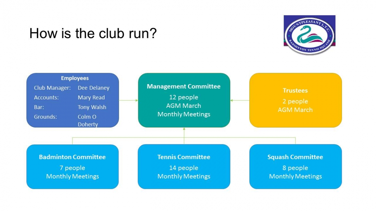 management club structure april 2019